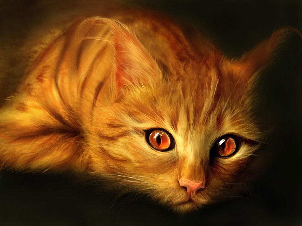 Картинки рыжие коты с зелеными глазами - 9d35