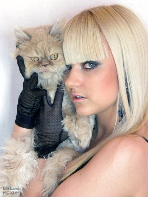 Женщина и кошка фото